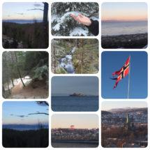 Lidt forskellige billeder af den skønne natur heroppe